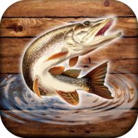 Fish Rain Sport Fishing Games. Fishing Simulator. 0.1.1.9 APKs MOD Unlimited moneycoin Downloads for android